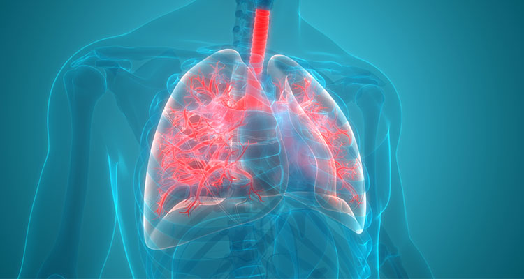 Dual versus Triple Inhaler Therapy for COPD: Updates and Current Recommendations