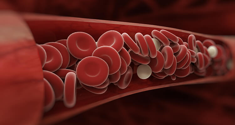 Anticoagulation reversal therapy