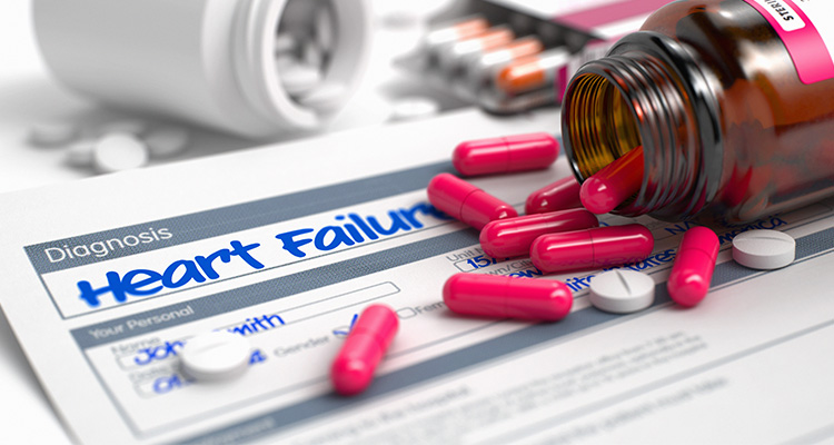 SGLT2 inhibitors in heart failure management: Dissecting the path from diabetes to heart failure