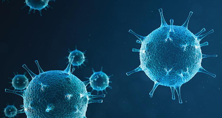 Viral hepatitis: An overview of disease management